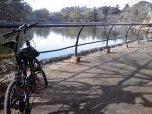 千葉公園 その2