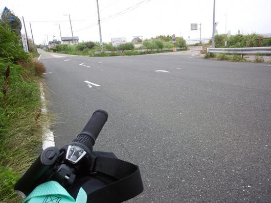 フラワーライン(山側)と国道401号(海側)に分岐