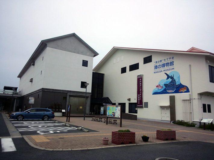 渚の駅 たてやま 渚の博物館