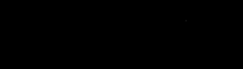 パナレーサー株式会社 ロゴ