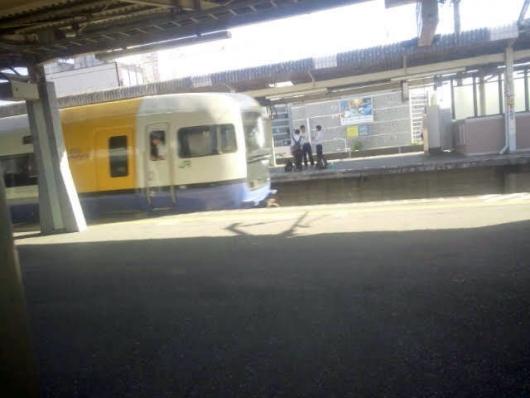 JR外房線 特急 ビューわかしお(255系)