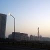 朝の空気感(美浜大橋より)