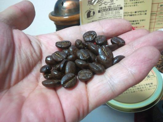 サルビア・コーヒー キリマンジャロ(豆)