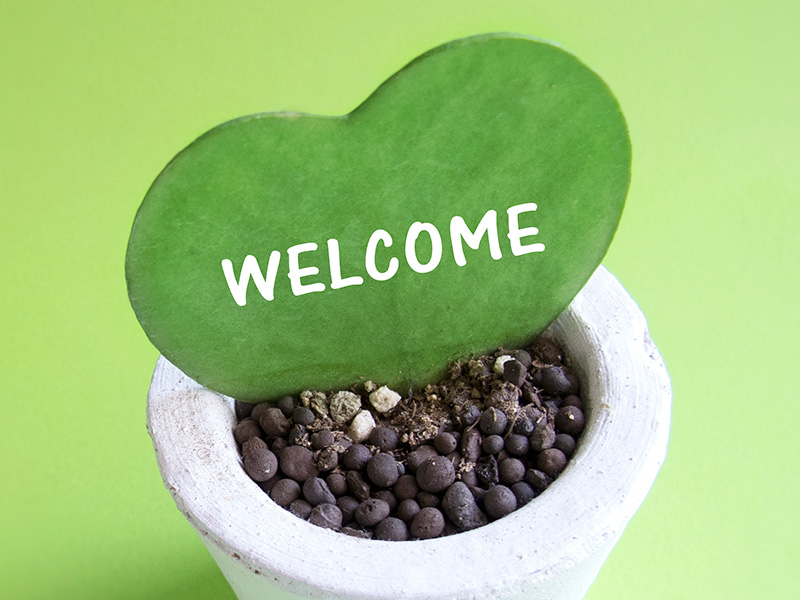 WELCOME(Photo AC)