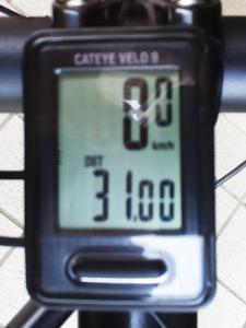 距離(トータル):31.00 km