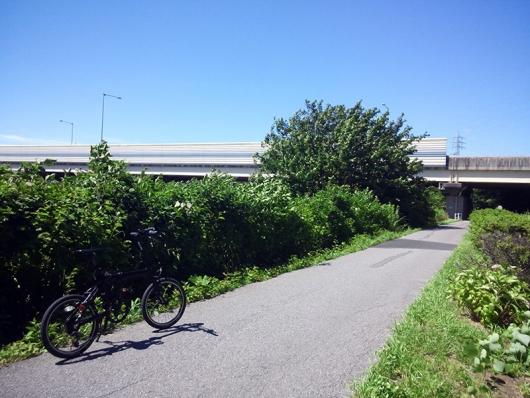 シルヴァF6F 花見川サイクリングコース 京葉道路 アンダーパス (01)