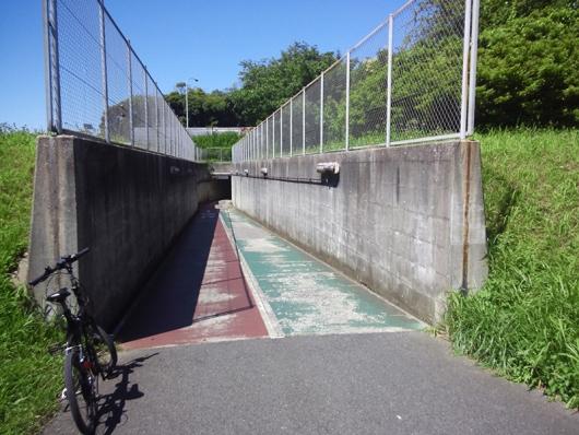 シルヴァF6F 花見川サイクリングコース 国道14号線アンダーパス (02)