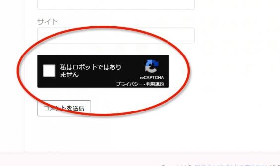 グーグル・reCAPTCHA:ウィジェット
